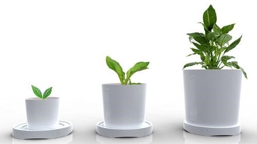 Grow your Business with these Top Tips
