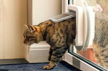How to Keep your House Warm Whilst Waiting for your Boiler Repair